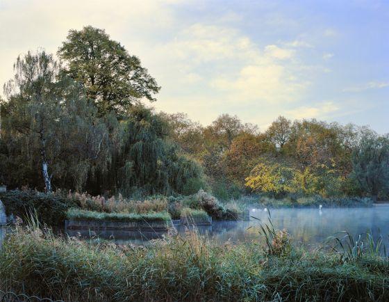 Mist on The Serpentine