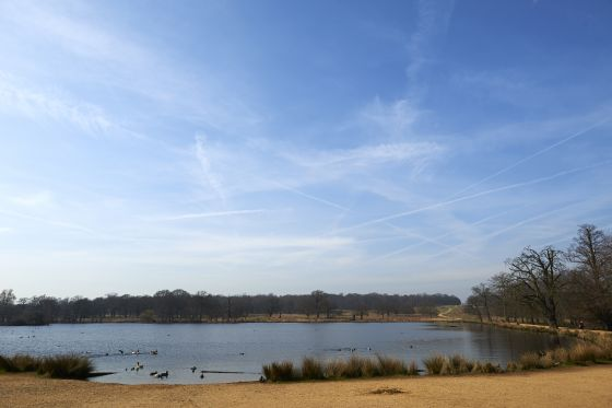 Winter blue skies over Pen Ponds