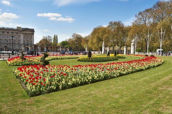 Memorial Gardens Flowerbed