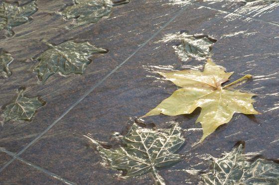 Autumn leaf on the Canada Memorial