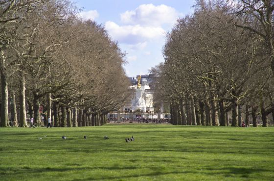 View from The Broad Walk towards Buckingham Palace