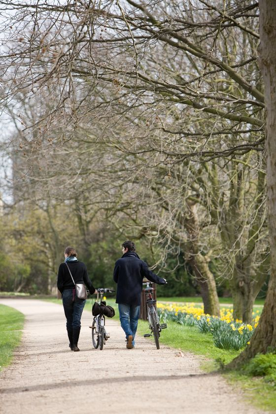 Cyclists in The Regent's Park